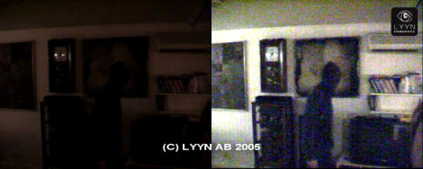 Lowlight break-in. Captured image from surveillance video.
